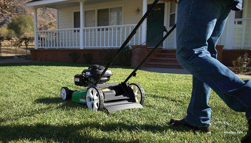 Alabama Mayor Working On Solution So Lawn Mowing Teens Don T Have To