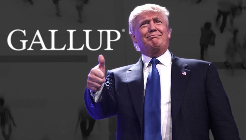 Trump Gallup