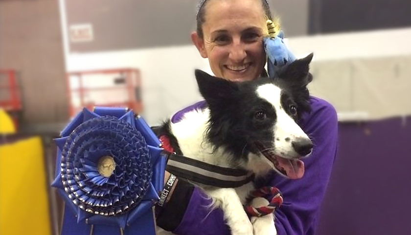 Murfreesboro Kennel Club Dog Show