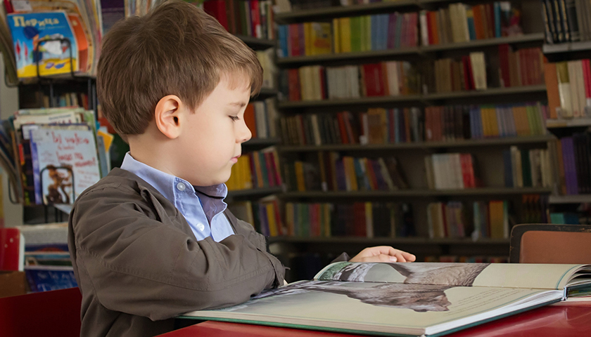 Young boy sitting in a library, reading